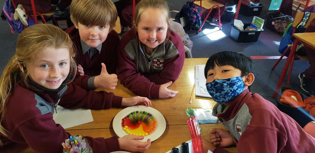 Ms Riordans 3rd investigated how sugar dissolves in water through the skittles experiment.