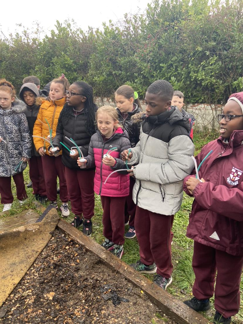 Ms. Gallagher's 5th Class enjoying the garden